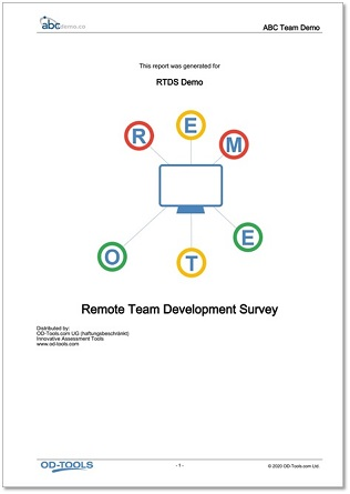 Remote Team Development Survey Report