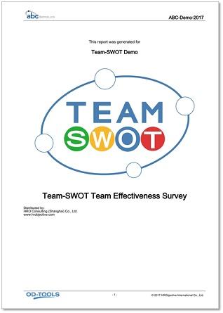 Team-SWOT™ Report