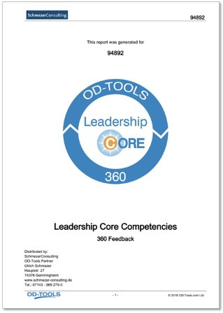 Leadership Core Competencies 360 Report