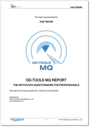 Motivation Questionnaire Report