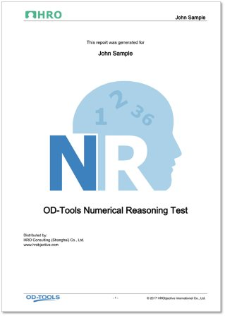 Numerical Reasoning Test Report